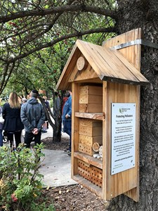 Recap: Urban Beekeeping Tour at MacEwan University