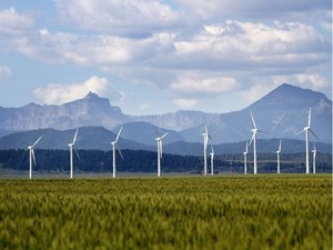 Wind power auction blows 'old renewable energy myths out of the water'