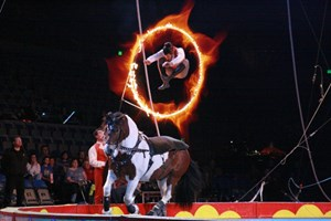 Experience Magic Under the Big Top with the Royal Canadian Family Circus SPECTAC! 2018 {Discount Code!}