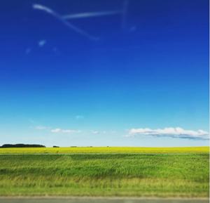 (Alberta*)