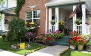 Nominate Your Neighbourhoods Best Blooms