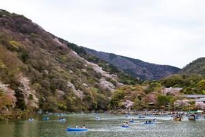 Exploring the Arashiyama District of Kyoto