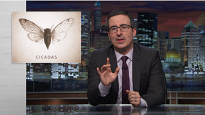 WATCH: John Oliver Catches Cicadas up on the Last 17 Years