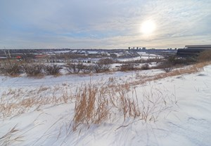 Edmonton Notes for January 12, 2020