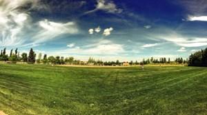 A beautiful day of baseball at Strathcona Athletic Park.