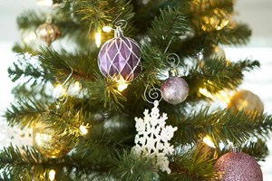 Decorate the Christmas Tree and Hall - Nov 22, 2018