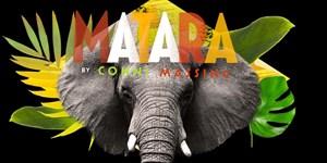 The elephant on stage: Matara