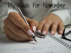 My Goals For November