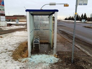 Multiple transit shelters damaged during mischief spree in south Edmonton