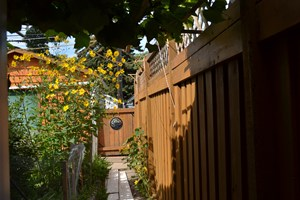 Coming to Canada: A Gardener's Meditation, Part 1
