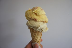 Rooster's Ice Cream Bar