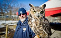 Get into the spirit of the season at the Edmonton Valley Zoo