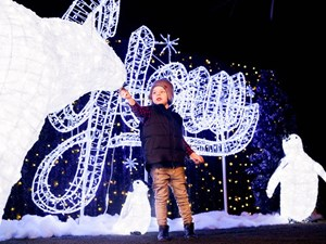 Canada's largest indoor Christmas lights show to glow in Edmonton area over the holidays