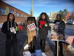 Latest Update: Anti-Fur Protest
