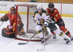Golden Bears battle Dinos for the Hardy Trophy