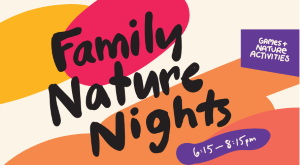 Family Nature Nights: Forest Fables