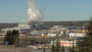 Forestry industry keeps on truckin' while oil patch stagnates