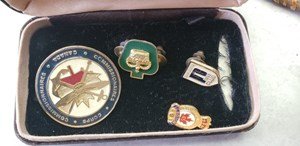 Grande Prairie woman seeks owner of military medals found in stolen car