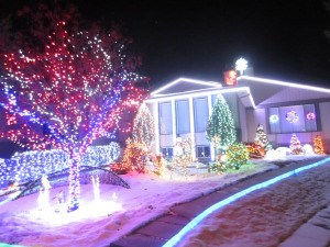 Edmontonians going to be asked to keep winter lights on past the holidays