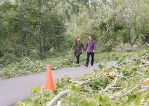 Stay out of City of Calgary parks, city urges as storm cleanup continues