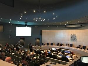 Dozens petition city to rethink Holyrood development project