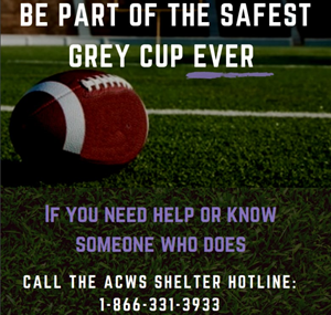 Edmonton organizations work to prevent domestic violence spike during Grey Cup